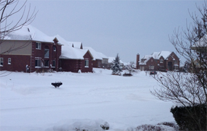 Subdivision during winter